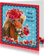 Verjaardagskaarten - verjaardagskaart hip paard blauw rood
