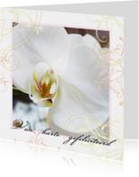 Verjaardagskaarten - Verjaardagskaart Orchidee elegant