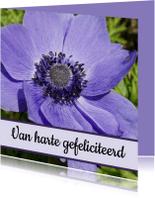Verjaardagskaarten - Verjaardagskaart paarse bloem - SK