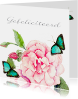 Verjaardagskaarten - Verjaardagskaart Roos vlinder