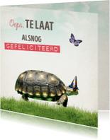 Verjaardagskaarten - Verjaardagskaart Schilpad