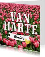 Verjaardagskaarten - Verjaardagskaart tulpen en naam