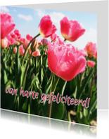Verjaardagskaarten - verjaardagskaart tulpen I -LB