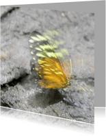 Rouwkaarten - Vlindervleugels