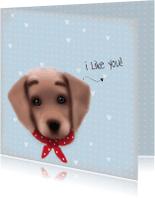 Vriendschap kaarten - Vriendschap I like you -LT