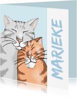Vriendschap kaarten - Vriendschap - twee katten voor jou