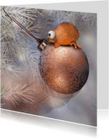 Kerstkaarten - Vrolijke Kerstkaart met vogeltje