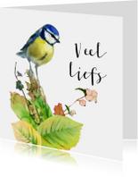 Zomaar kaarten - Warme groet met lief vogeltje