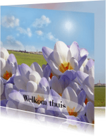 Welkom thuis kaarten - Welkom met voorjaarsbloemen