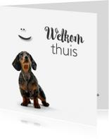 Welkom thuis kaarten - Welkom thuiskaartje met een lief hondje
