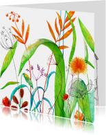Bloemenkaarten - Wilde planten