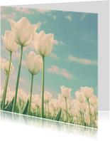 Bloemenkaarten - Witte tulpen voor moeder