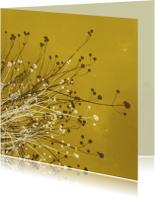 Zomaar kaarten - Zomaar kaarten - Gouden takjes