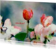 Sterkte kaarten - 13128 Sterkte kaart Bloemen