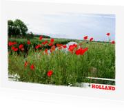 Vakantiekaarten - 14184 Klaprozen Holland