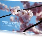 Beterschapskaarten - 15265 Take it easy