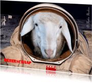 Beterschapskaarten - Beterschaap in ruimte