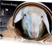 Beterschapskaarten - Beterschaap in ruimte