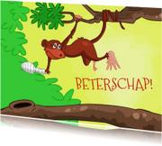 Beterschapskaarten - beterschap aap -JB