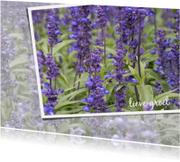 Bloemenkaart Lavendelveld