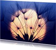 Condoleancekaarten - Condoleance ondergaande zon - BK