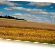Ansichtkaarten - frans platteland