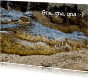 Ansichtkaarten - Kroko met sadistische glimlach