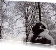 Kunstkaart Spoetnikkijker