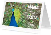 Moederdag kaarten - Moederdag Trotse pauw