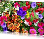 Bloemenkaarten - Mooie bloemenkaart met diverse kleurige bloemen in een tuin