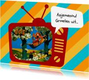 Vakantiekaarten - Vakantie Loeki tv hangmat -A