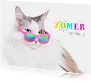 Vakantiekaarten - Vakantiekaart - Zomer vakantie - Kat met zonnebril