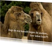 Dierenkaarten - Zegt de ene kameel tegen de andere