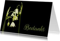 Rouwkaarten - Bedankt - zwart met lenteklokjes