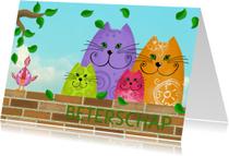 Beterschapskaarten - Beterschapskaart katten en vogel
