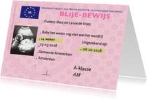 Felicitatiekaarten - Blije-bewijs van zwanger zijn