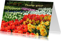 Bloemenkaarten - Bloemen voorjaar- en zomer groet