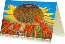 Bloemenkaarten - Bloemenkaart - Zonnebloem & tulp