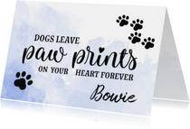 Condoleancekaarten - Condoleance - huisdier overleden