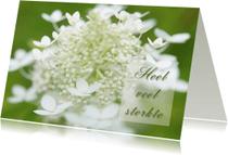 Condoleancekaarten -  Condoleancekaart -