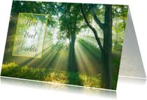 Condoleancekaarten - Condoleancekaart-ElswoutLicht