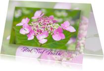 Condoleancekaarten - Condoleancekaart Hortensia's