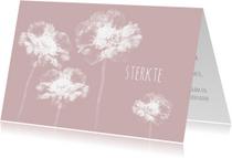 Condoleancekaarten - Condoleancekaart scabiosa