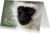 Dierenkaarten - Dierenkaart aap ik mis je