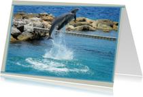 Dierenkaarten - Dierenkaart Dolfijnen