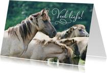 Dierenkaarten - Dierenkaart  paarden veel liefs