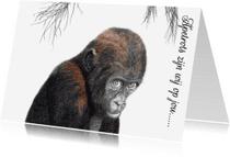 Dierenkaarten - Dierenkaarten Adjibolo de aap