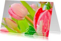 Condoleancekaarten - Drupppels op tulpen