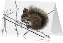 Kunstkaarten - 'Eekhoorn' KunstAnders