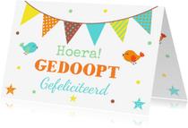 Felicitatiekaarten - Felicitatie doopsel vlag en vogels - LB